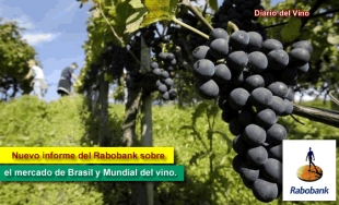 Rabobank: Informe Global Wine Industry Q2 2013