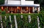 Algodón: Un hogar entre viñedos
