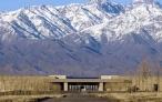 Mendoza, entre las capitales del vino.